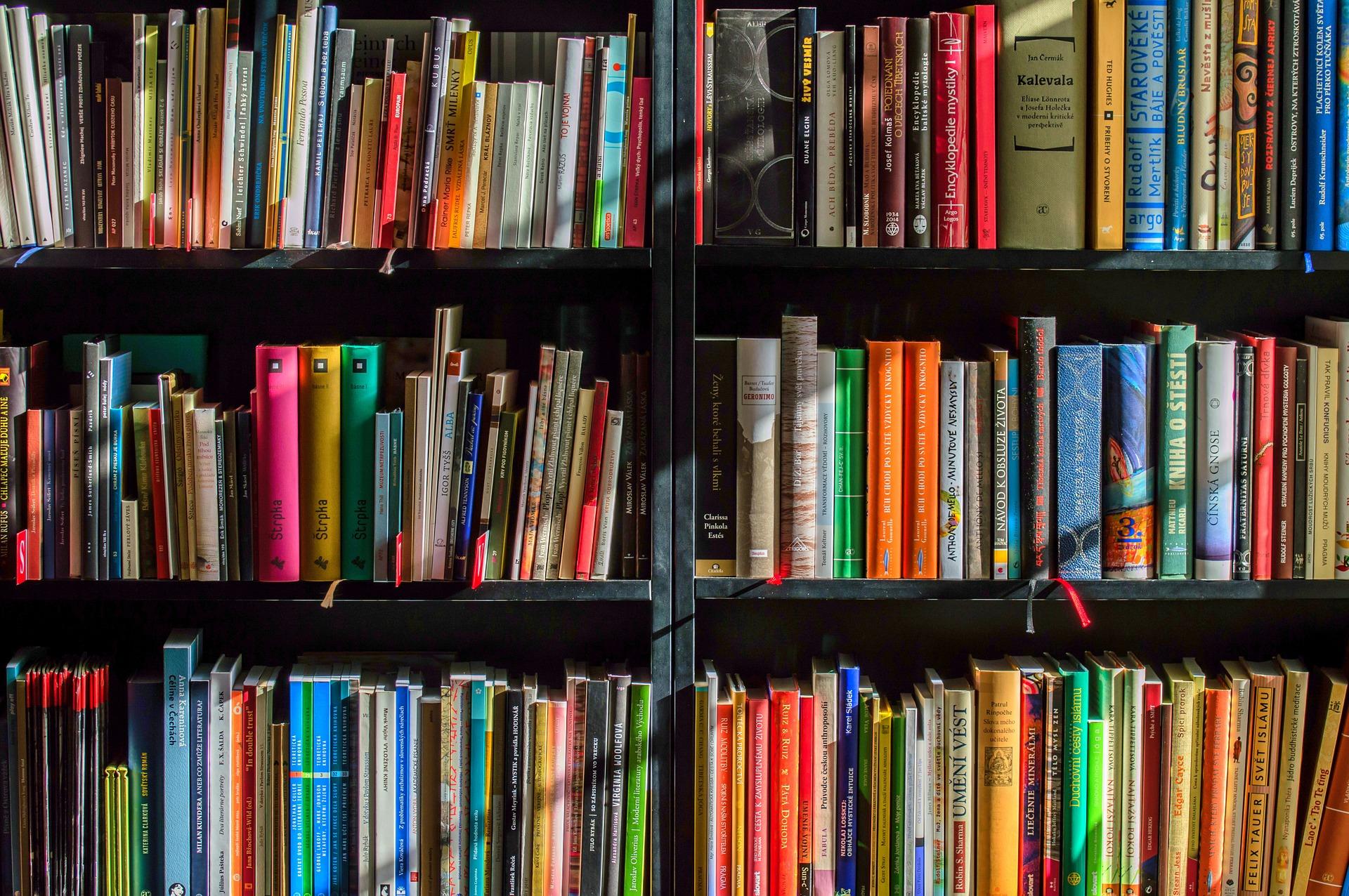 Einen Verlag finden. Das Bild zeigt viele Bücher in verschiedenen Farben in einem Regal.